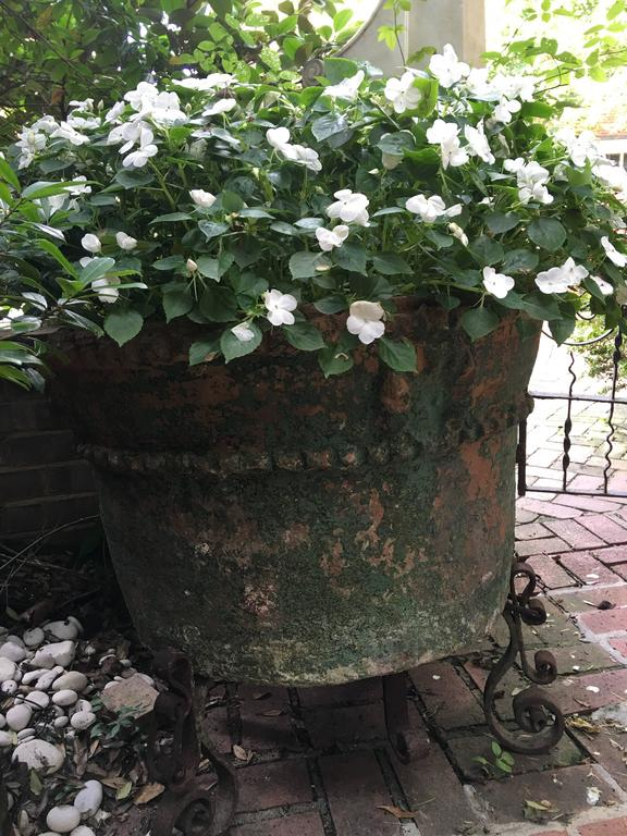 Large Painted Terra Cotta Planter with a Wrought Iron Stand For Sale 2