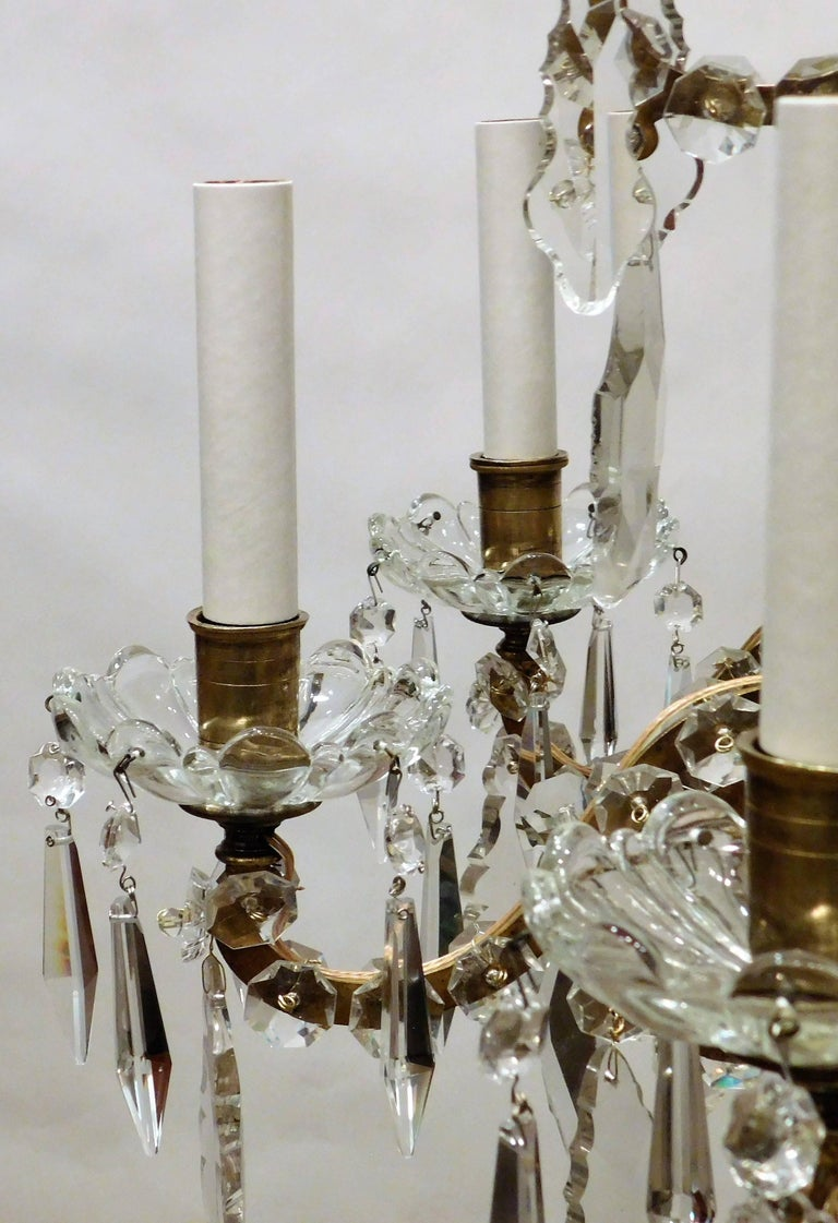 Louis XVI Style Six-Light Bronze and Crystal Chandelier, France, circa 1890 For Sale 3