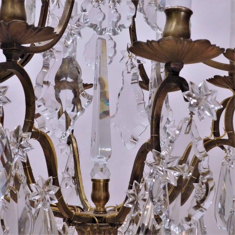 Louis XV Style Eight-Light Bronze and Crystal Chandelier, France, circa 1900 6