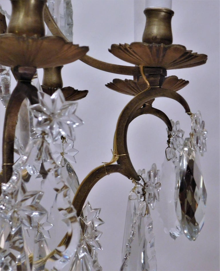 Louis XV Style Eight-Light Bronze and Crystal Chandelier, France, circa 1900 For Sale 3