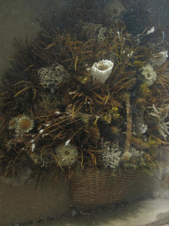 Antique Victorian Dried Flower Basket Diorama In Distressed Condition For Sale In High Point, NC