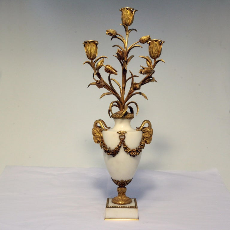 French Pair of Louis XVI Style Marble and Gilt Bronze Candelabra For Sale