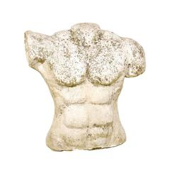 French Muscular Nude Male Torso from the 1960s