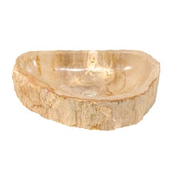 Polished Petrified Wood Sink in Cream and Beige Tones, Perfect for a Vanity