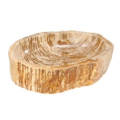 Polished Petrified Wood Sink with Warm Beige and Brown Wood Grain Throughout