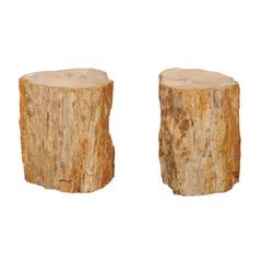 Pair of Beige, Brown and Cream Polished Petrified Wood Drinks / Side Tables