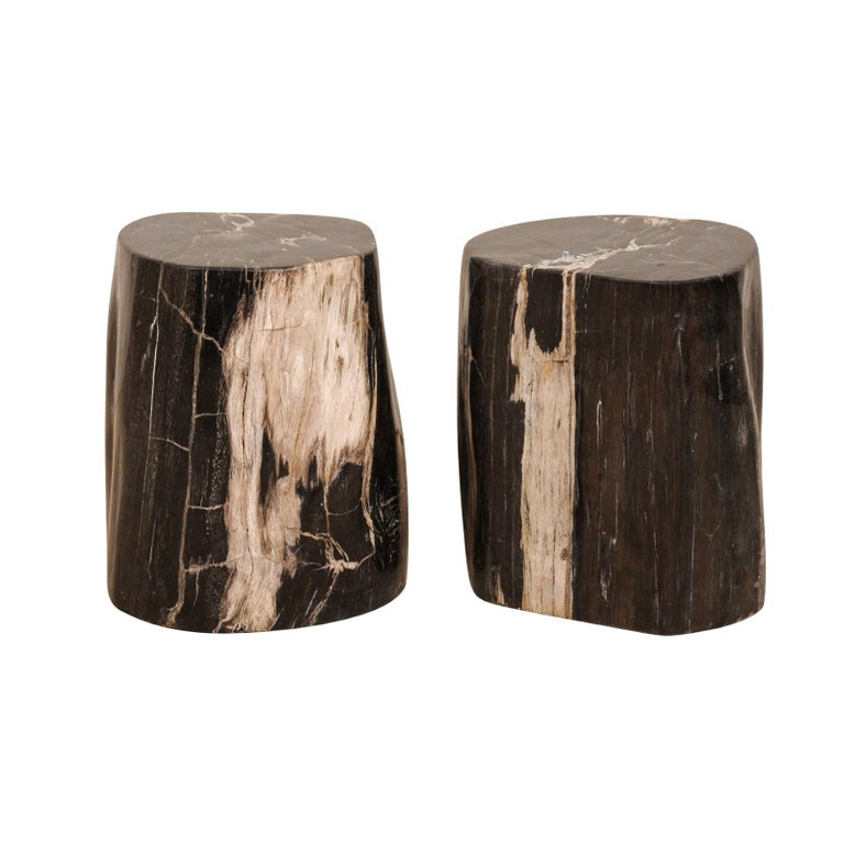 Pair of Petrified Wood Drink Tables in Rich Black Color with Streaks of Cream
