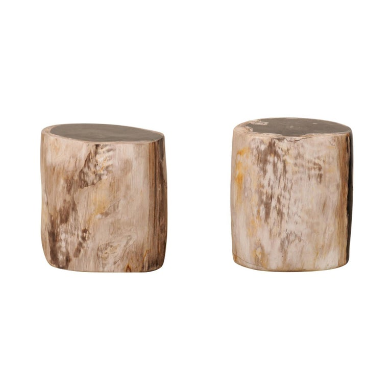 Pair of Black, Cream and Tan Petrified Wood Side Tables