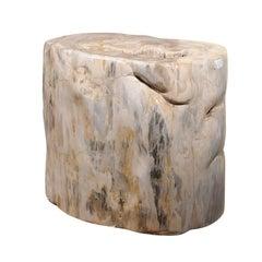 Impressively Large Petrified Wood Table Base