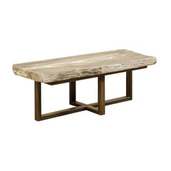 Petrified Wood Slab Top Coffee Table in Soft White and Grey with Modern Base