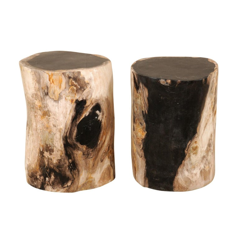 Pair of Polished Petrified Wood Side Tables or Stools in Cream and Black