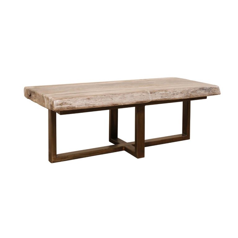 Polished Petrified Wood Coffee Table or Bench with Modern Metal Base