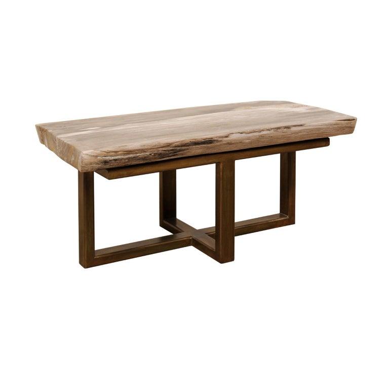Polished Petrified Wood Coffee Table or Bench with Nice Modern Metal Base