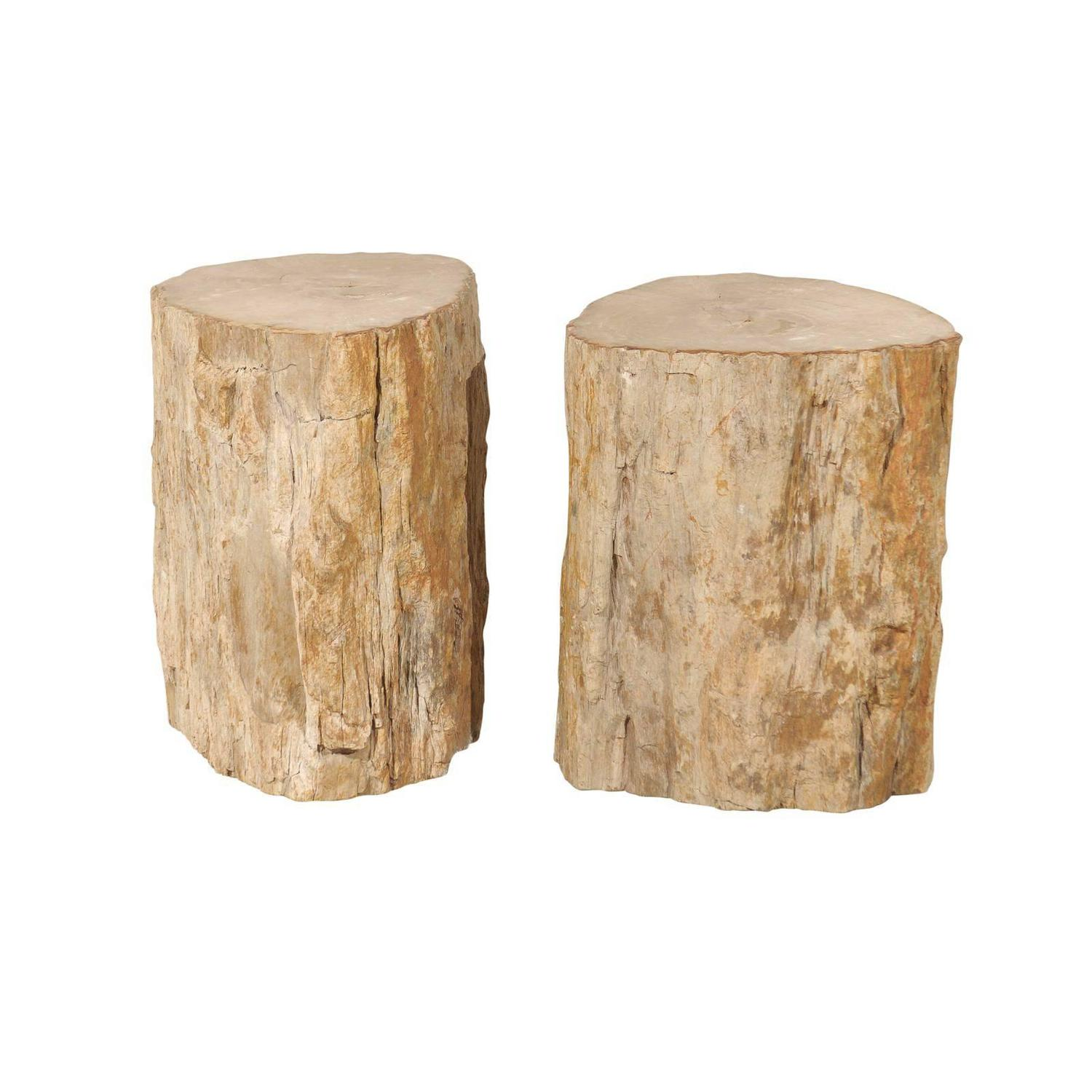 Pair Of Light Color Petrified Wood Drinks Tables For Sale At 1stdibs