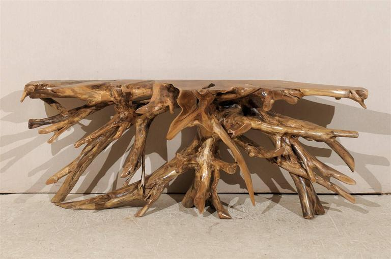 A teak root wooden console table of interesting shape from Indonesia.  This console table would be perfect to be placed against a wall as its back side is carved flat. It is made of teak wood, a tropical hardwood, particularly valued for its