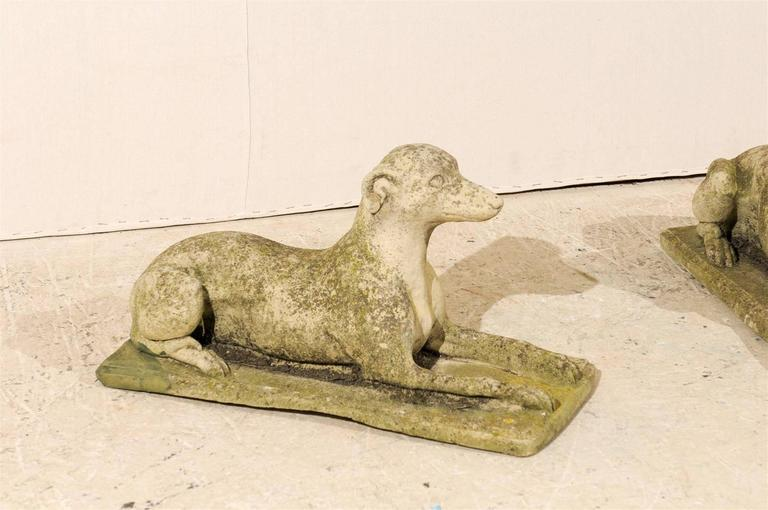 A Pair of Italian Cast Stone Medium Sized Greyhound Statues In Good Condition For Sale In Atlanta, GA