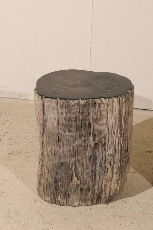 Pair of Black Petrified Wood Fossil Drink or Side Tables, Natural, Polished Wood 5