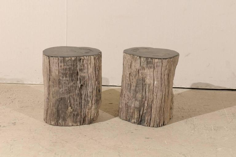 Pair of Black Petrified Wood Fossil Drink or Side Tables, Natural, Polished Wood 2