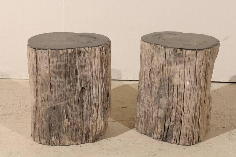 Pair of Black Petrified Wood Fossil Drink or Side Tables, Natural, Polished Wood 3