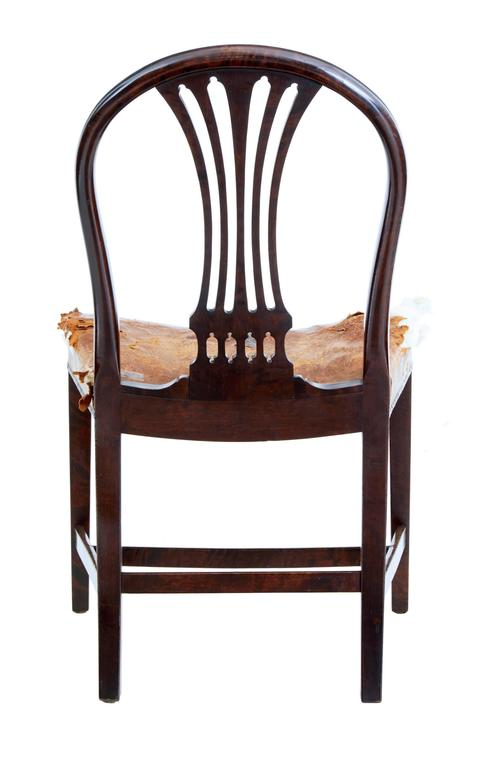 Empire Revival Set of Six, 19th Century Birch Swedish Dining Chairs For Sale