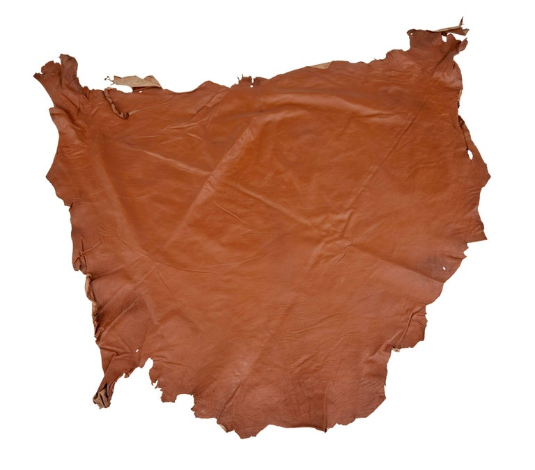 Collection Of Ten Tan Cow Leather Hides For Upholstery For