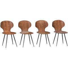 Modern Bentwood Side Chair