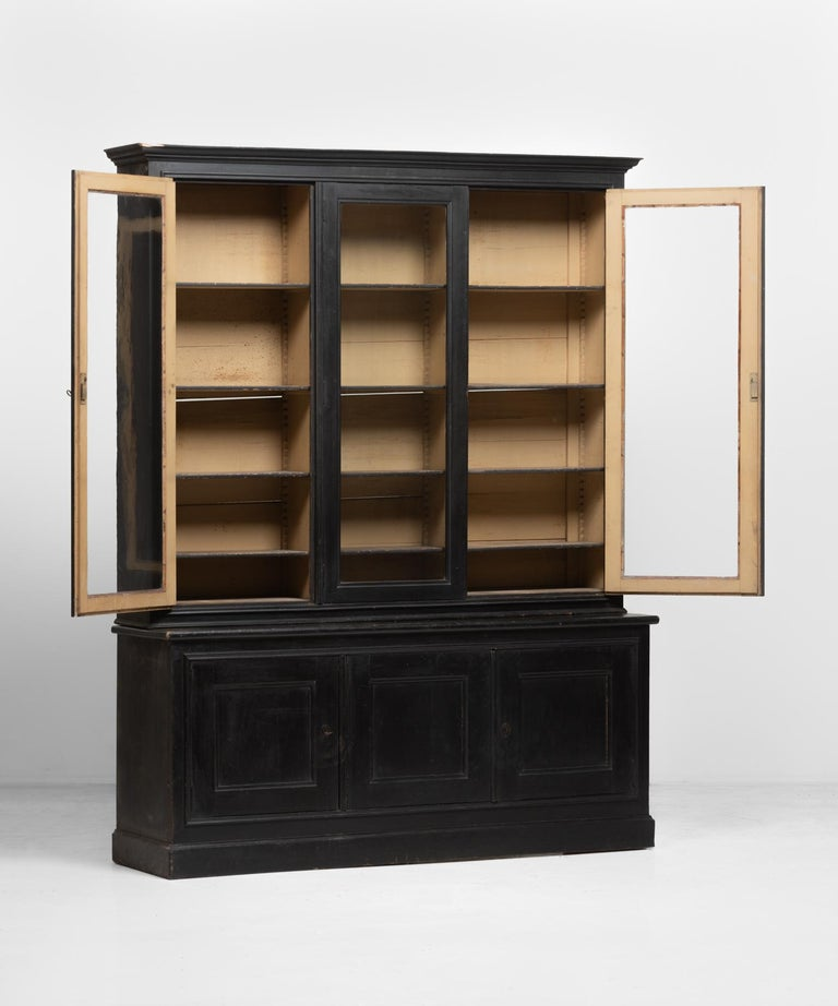French Napoleon III Pharmacy Cabinet, circa 1870 For Sale