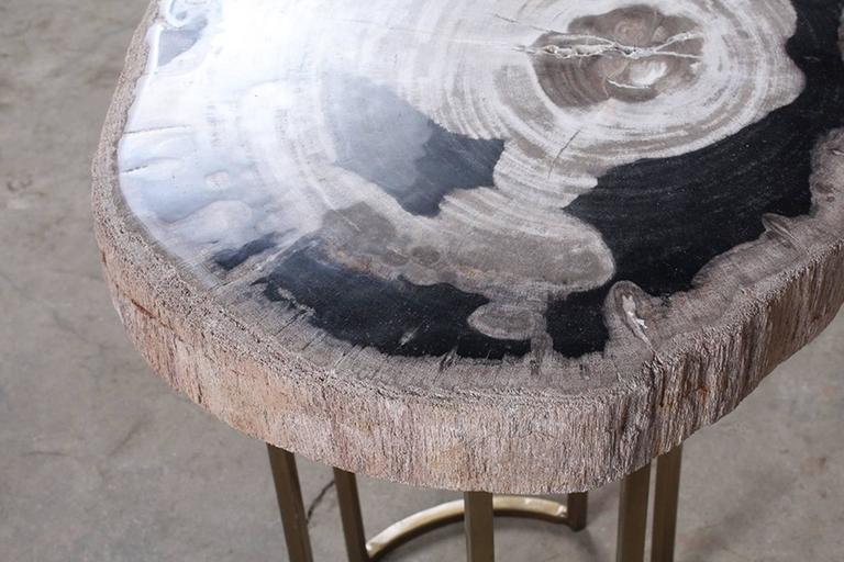 A stunning petrified wood and brass accent table. This accent table features a removable round petrified wood top with bold wood grain hues on a gold tone open metallic brass base with curved accents.