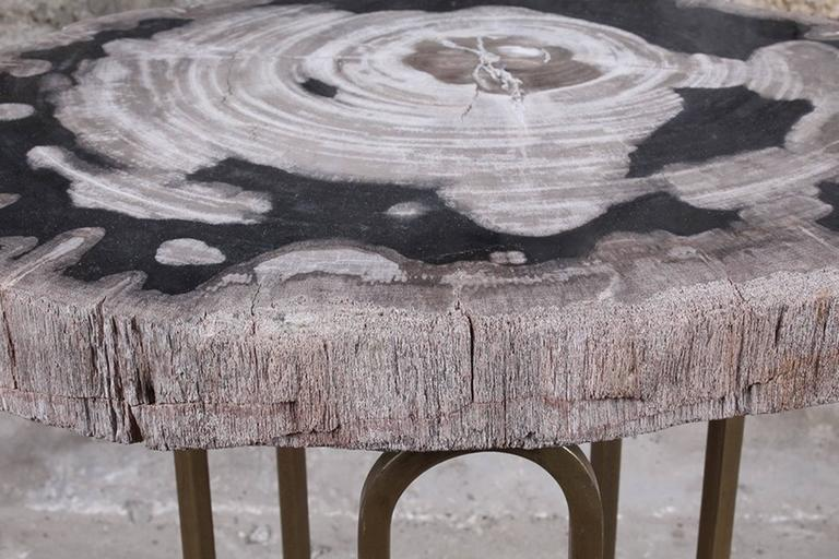American Custom Petrified Wood and Brass Accent Table For Sale