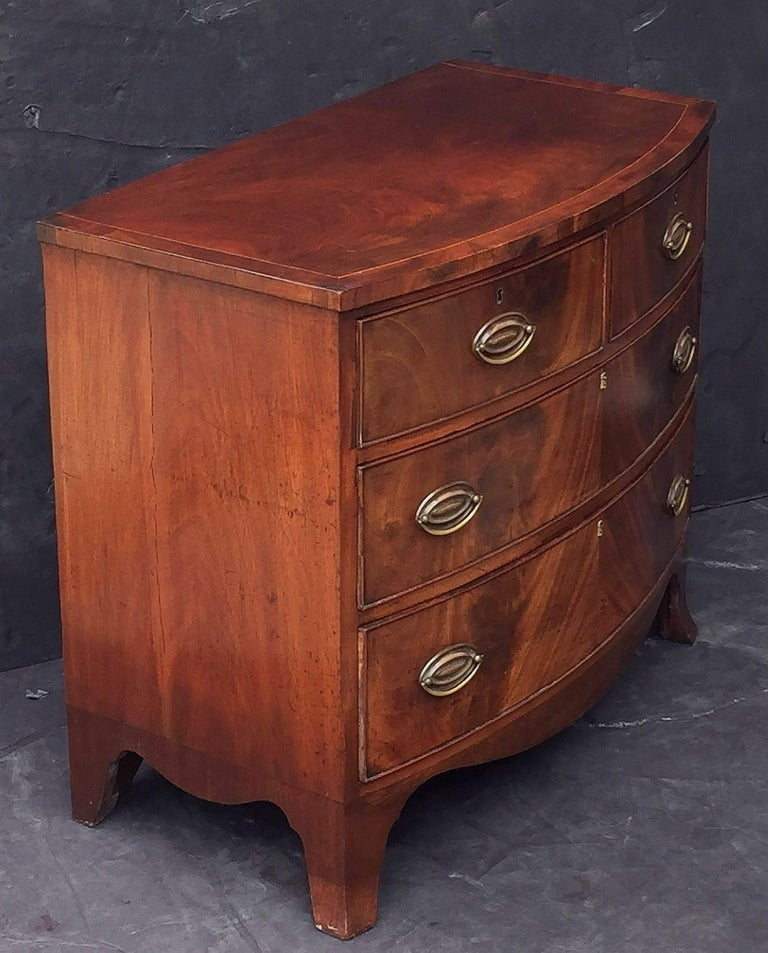 English Bow Front Chest of Inlaid Flame-Cut Mahogany 6