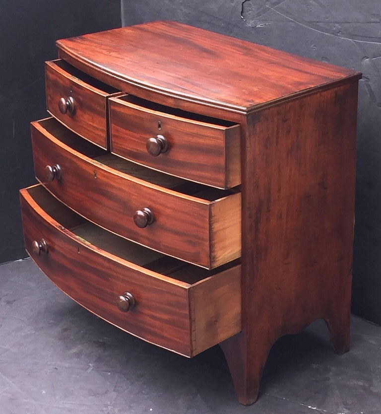 English Bow Front Chest of Mahogany For Sale 1