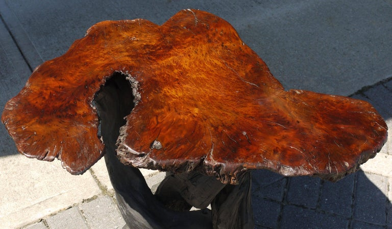 Mid-Century Modern Vintage Japanese Burl Top Table with Shou Sugi Ban Driftwood Base For Sale