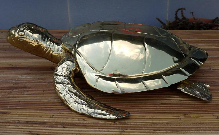 Amazing large scale high polished brass sea turtle box. Great design to it. Great scale for use on a coffee table or entrance table to hide your keys or whatever.