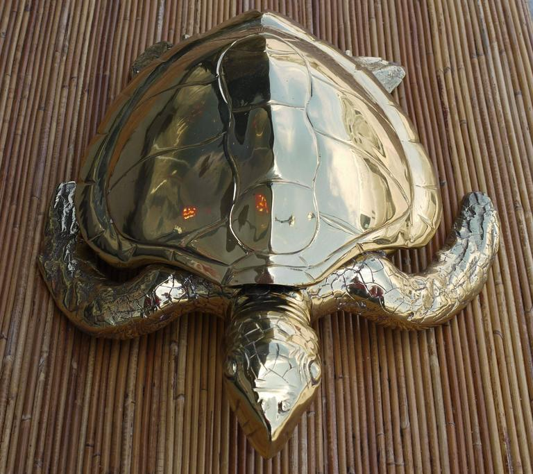 Italian Stunning Large Scale Brass Sea Turtle Box For Sale