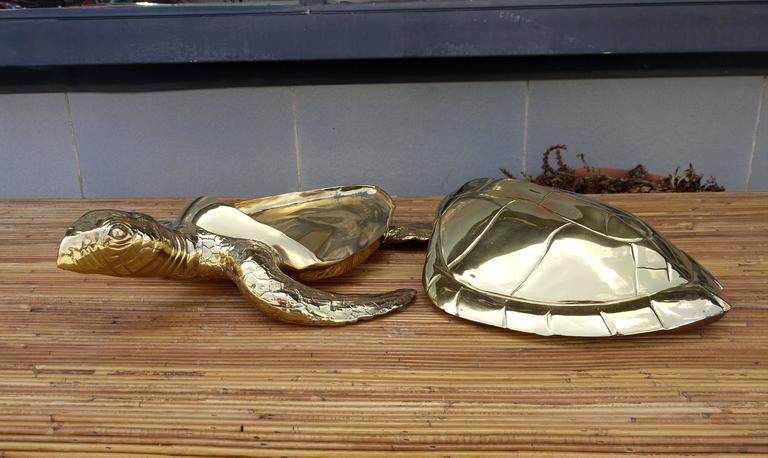 Stunning Large Scale Brass Sea Turtle Box In Excellent Condition For Sale In Kilmarnock, VA