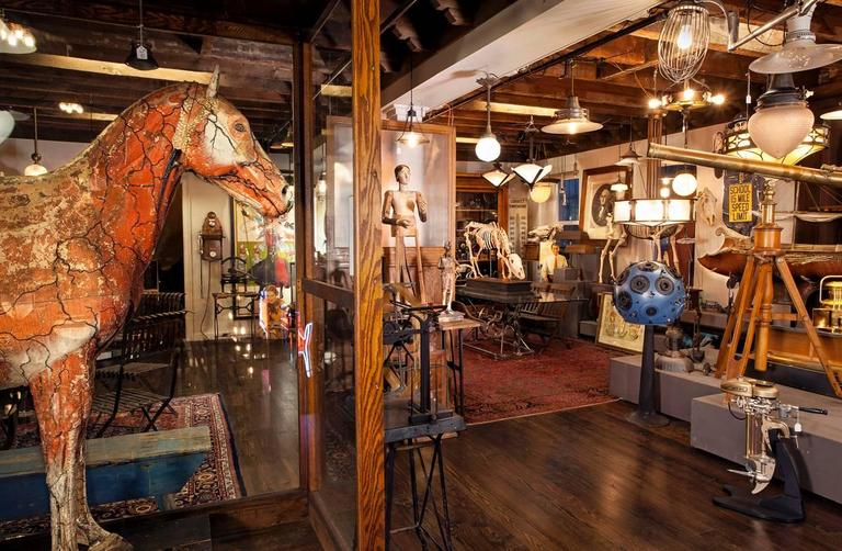Industrial Dr. Auzoux's Historic Full Sized Horse Model For Sale