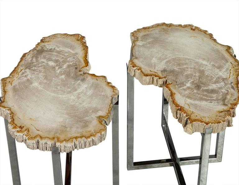 American Pair of Petrified Wood Accent Tables For Sale