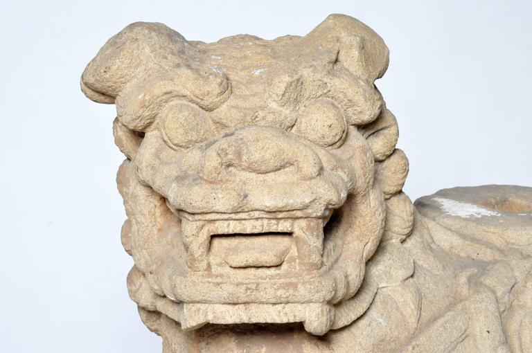 Pair of Chinese Stone Guardian Lions In Good Condition For Sale In Chicago, IL