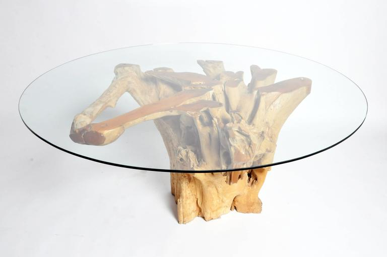 Teak Root Pedestal Table with Glass Top For Sale at 1stdibs : DSC0364l from www.1stdibs.com size 768 x 510 jpeg 20kB