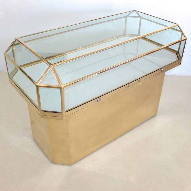 Pair of Solid Brass and Glass Geometric Display Cases For Sale 1