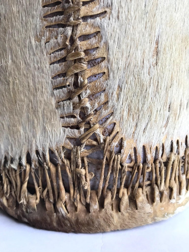 Hide Late 19th Century Native American Drum For Sale