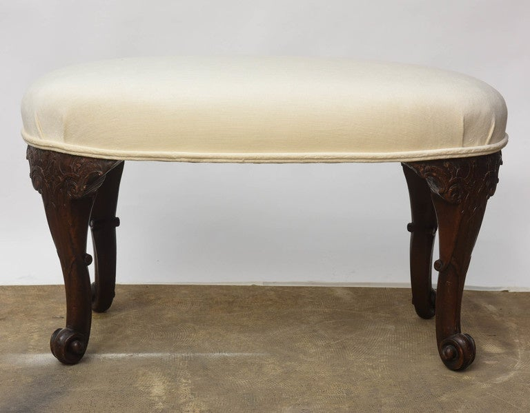 19th Century Mahogany English Seat kidney- shaped For Sale 3