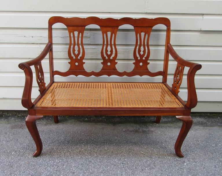 19th Century St.Croix Regency Mahogany and Cane Bench 6