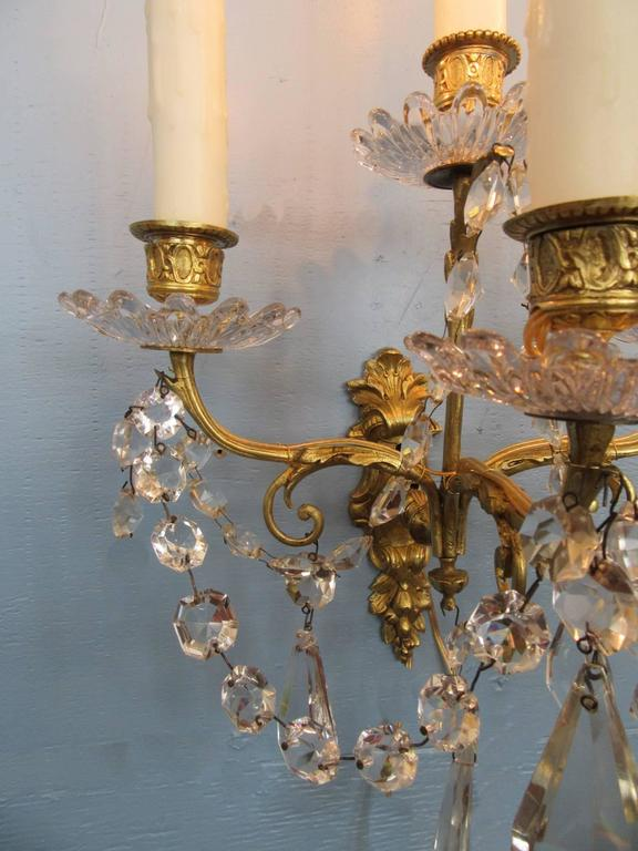 Pair of Early 19th Century French Regence Crystal and Bronze Dore Sconces 4