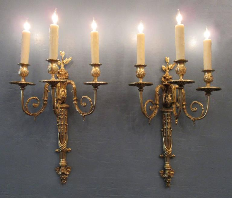 A pair of early 19th century French Regence bronze doré sconces, circa 1810, each featuring three candle arm torchieres with foliate, grape and fruit motifs. The pair were originally candle but have been recently cleaned and rewired with new