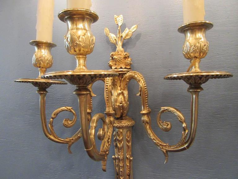 Gilt Pair of Early 19th Century French Regence Bronze Dore Sconces with Grapes For Sale