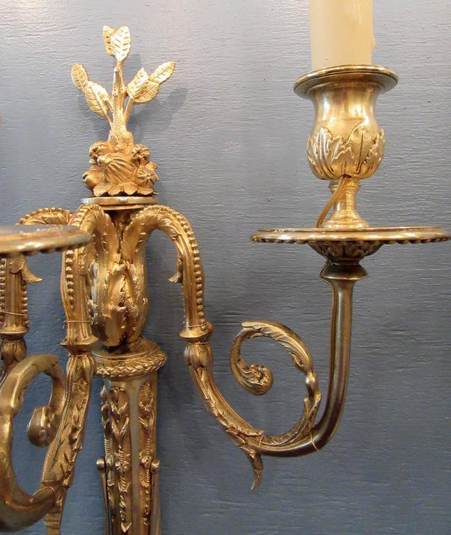 Pair of Early 19th Century French Regence Bronze Dore Sconces with Grapes In Excellent Condition For Sale In Charleston, SC