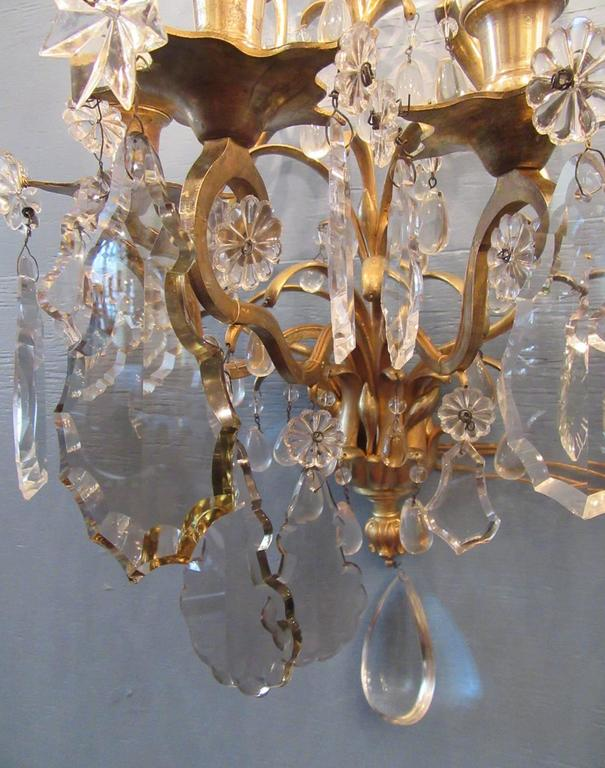 Pair of 19th Century French Louis XIV Tall Bronze Dore and Crystal Sconces 6