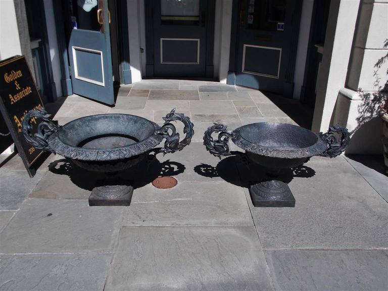 Pair of American cast iron garden planters with floral molded edges, scrolled dragon handles, and terminating on raised decorative floral circular and squared plinths, Early 19th Century.   Measures: Large urn 48