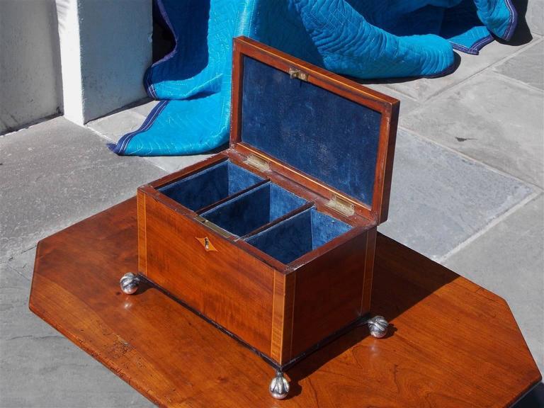 Silver English Regency Mahogany and Tulipwood Inlaid Tea Caddy, Circa 1815 For Sale